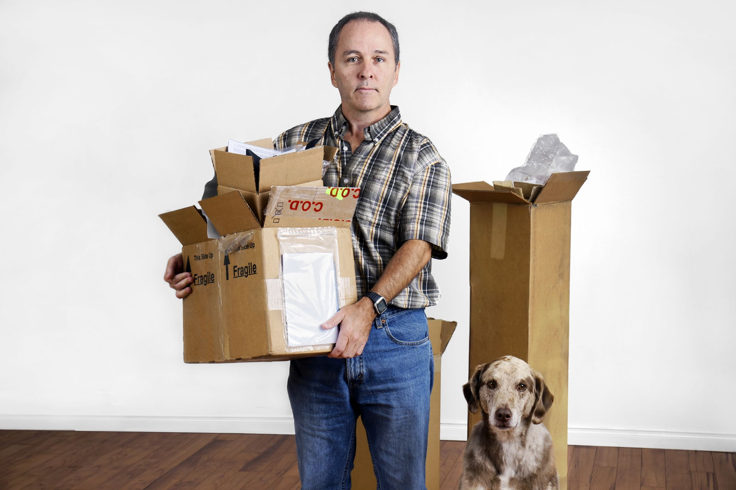 Professional pet movers