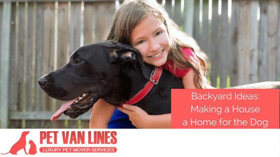 backyard ideas; making a house a home for the dog