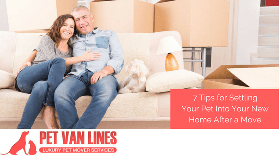 Moving with your pet pet van lines pet transportation for Moving into a new build house tips