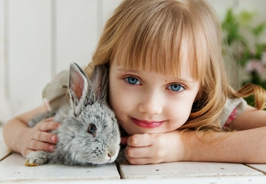 A girl with a bunny as an option for a pet list; and for informatio about Pet Van Lines transporation service.